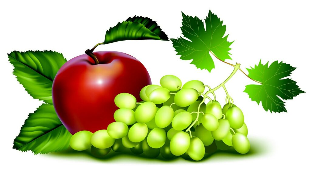 fruit-97479_1280